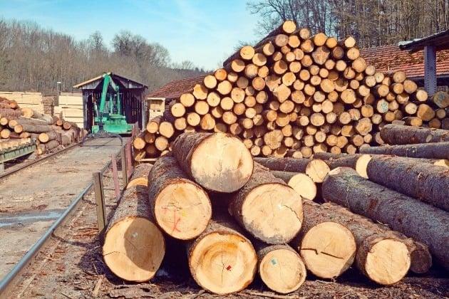 Hardware, Lumber and Building Materials Retailer